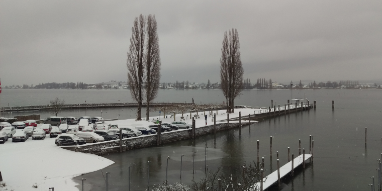 Stedi - Winter 2017
